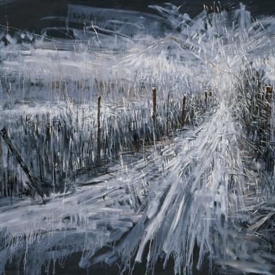 Landscape, 300X200cm, 2008