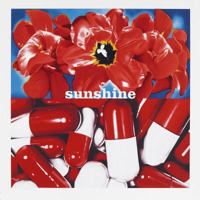 Sunshine Daydream_2007-sérigraphie sur papier-92x90cm